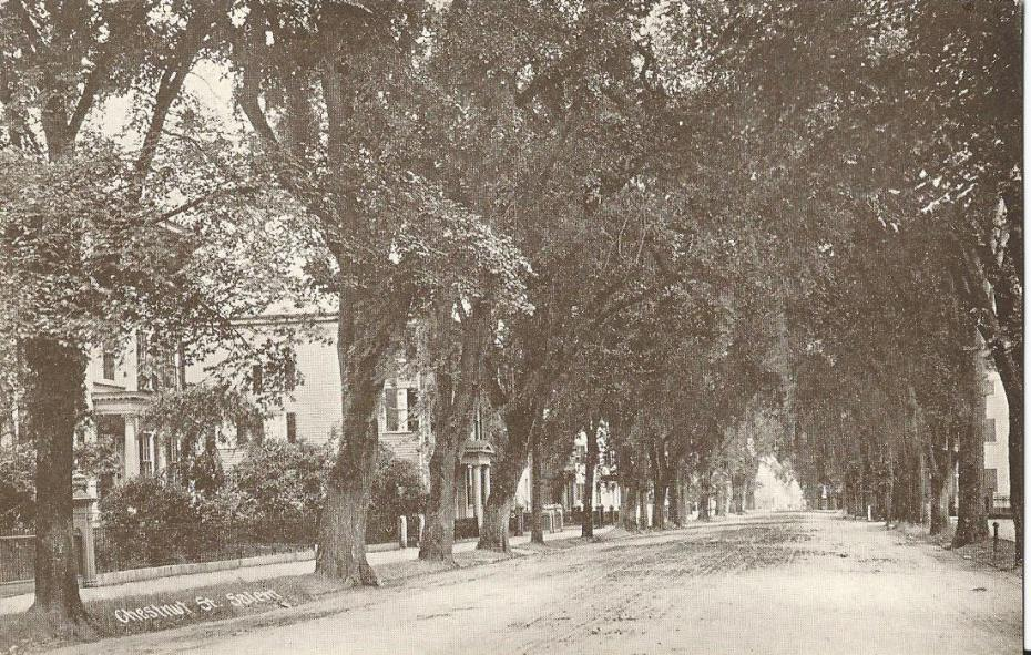 Chestnut Street of yesteryear looks quite like today's Street
