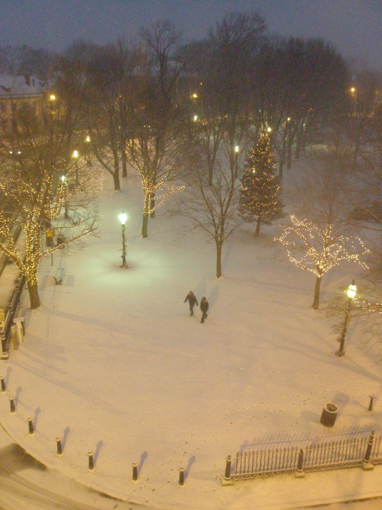 As dusk gathered, Salem Common began to look magical.