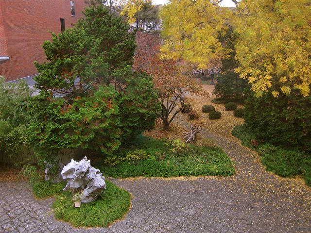 Asian Garden & Terrace, in warmer weather. Photo courtesy of Richard Stein.