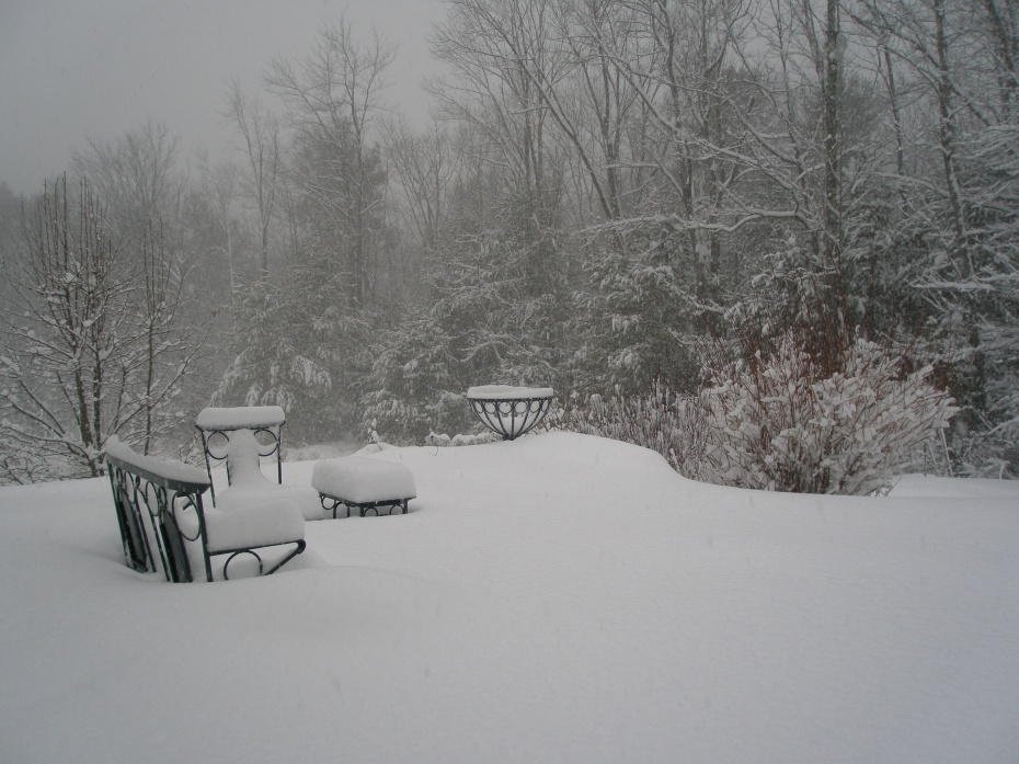 Here's incentive to leave! On March 8th, a fresh foot of snow blanketed my back yard, which made my March 9th departure to Points South seem even sweeter.