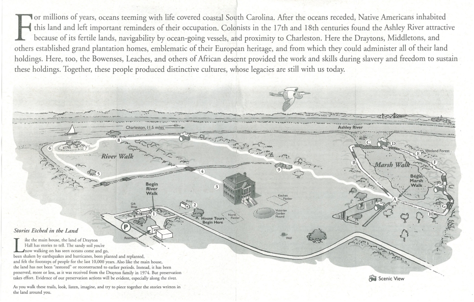 Plan of the Grounds at Drayton Hall