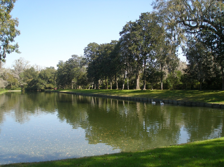 The huge, rectangular Reflection Pool, enclosed by precisely-positioned Southern Magnolias.