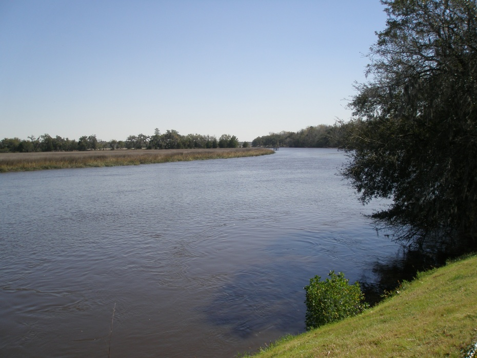 The gentle curve of the Ashley River