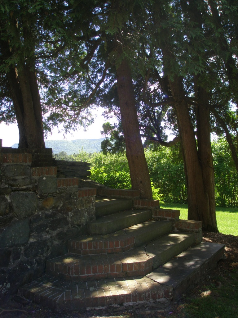 Shady Stairway, leading up from the Rose Garden, to the Top Lawn Walkway.