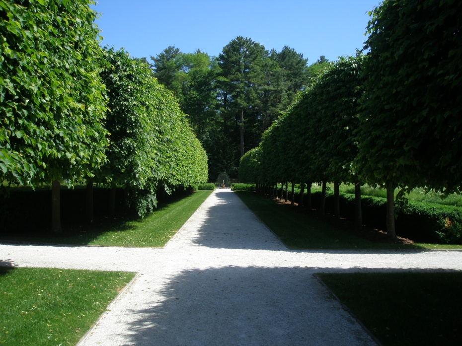 The Lime Walk, so-named for its Linden Trees. In England, Linden Trees are known a Lime Trees.