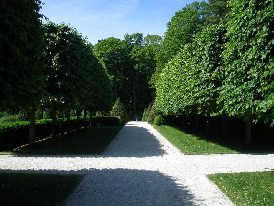 On Lime Walk; looking toward the Walled Garden