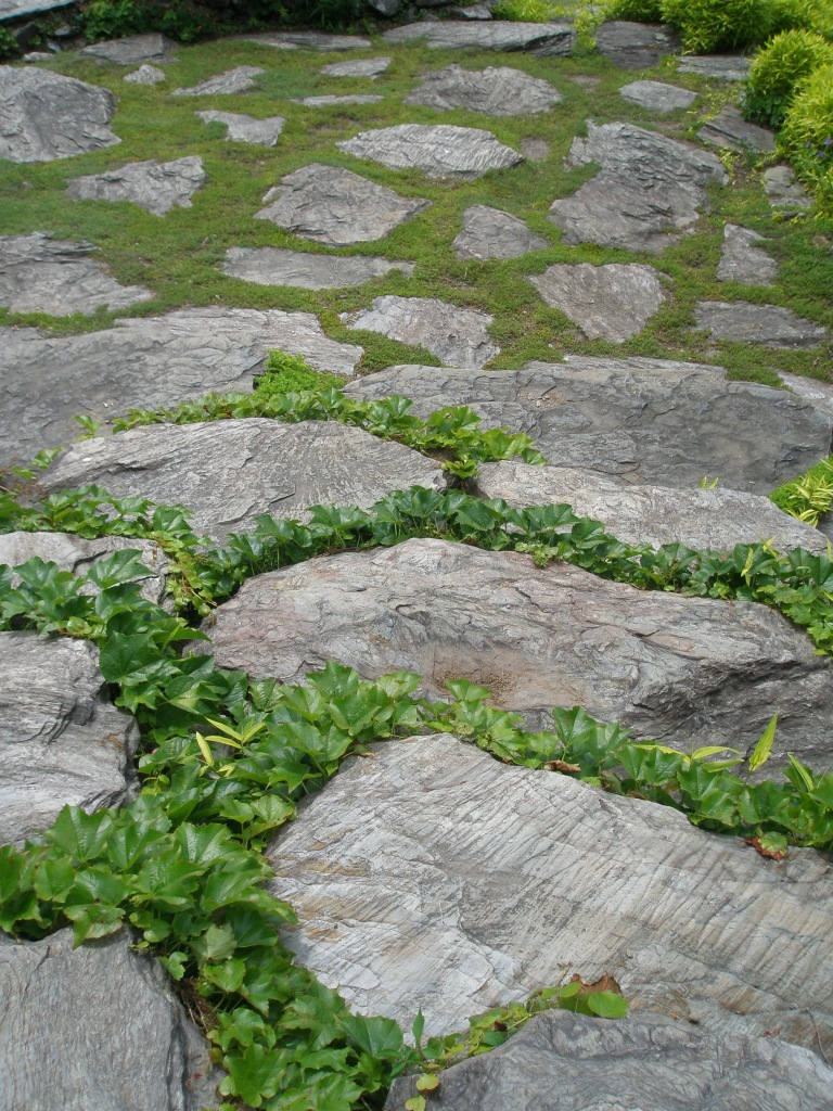 Paving and Moss at The Point