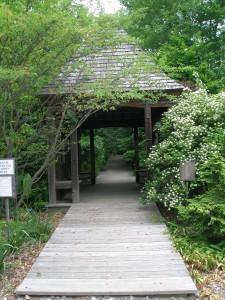 Entrance Pavilion