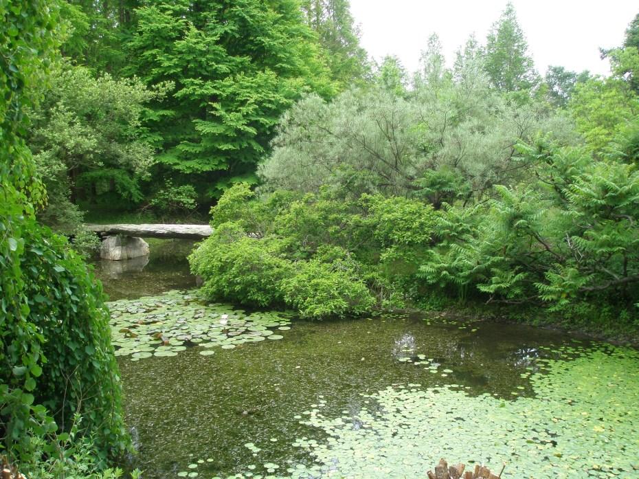 A Giant Flint Stone forms a Footbridge across the Lake