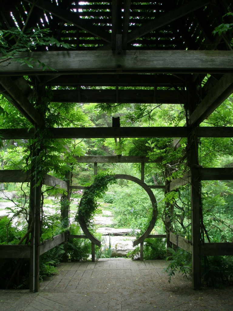 View through the Wisteria Pavilion