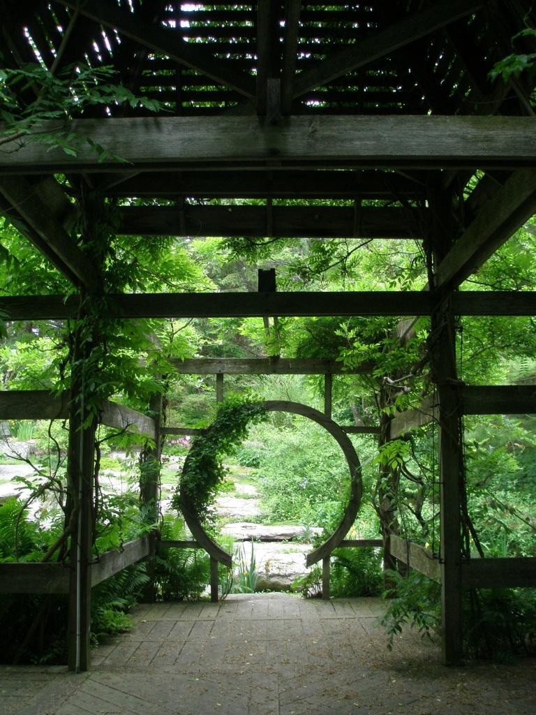 View through the Wisteria Pavilion