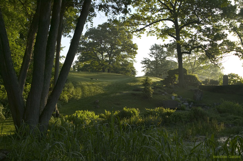 South Lawn, in early morning light. Image courtesy of the Innisfree Foundation.