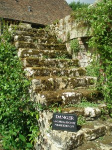Ancient Steps in the Cuttings Garden