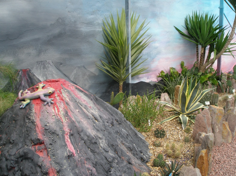 Amid the cactus collection, this display looks very much like the volcano I made for my third grade science project...but I didn't have the sense to add a lizard.