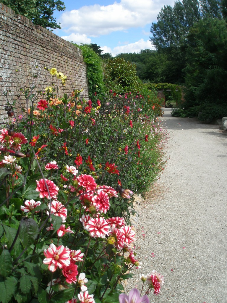 "Dahlia Border, along the North Wall.  At the edges of the garden, against red-brick walls, are the Man's Influence Borders. These are gradually being cultivated, not with true species, but with ""improved"" cultivars."