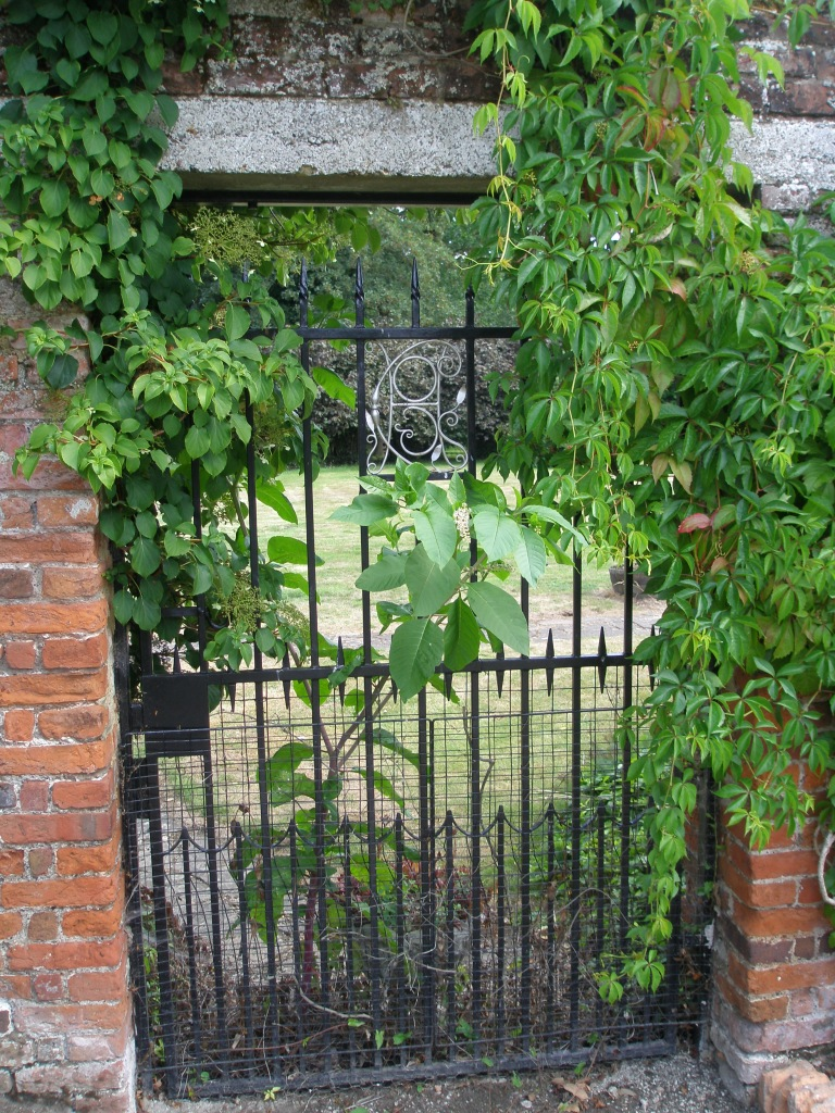 Garden Gate near what I have now taken upon myself to rename the Buckshot Border.