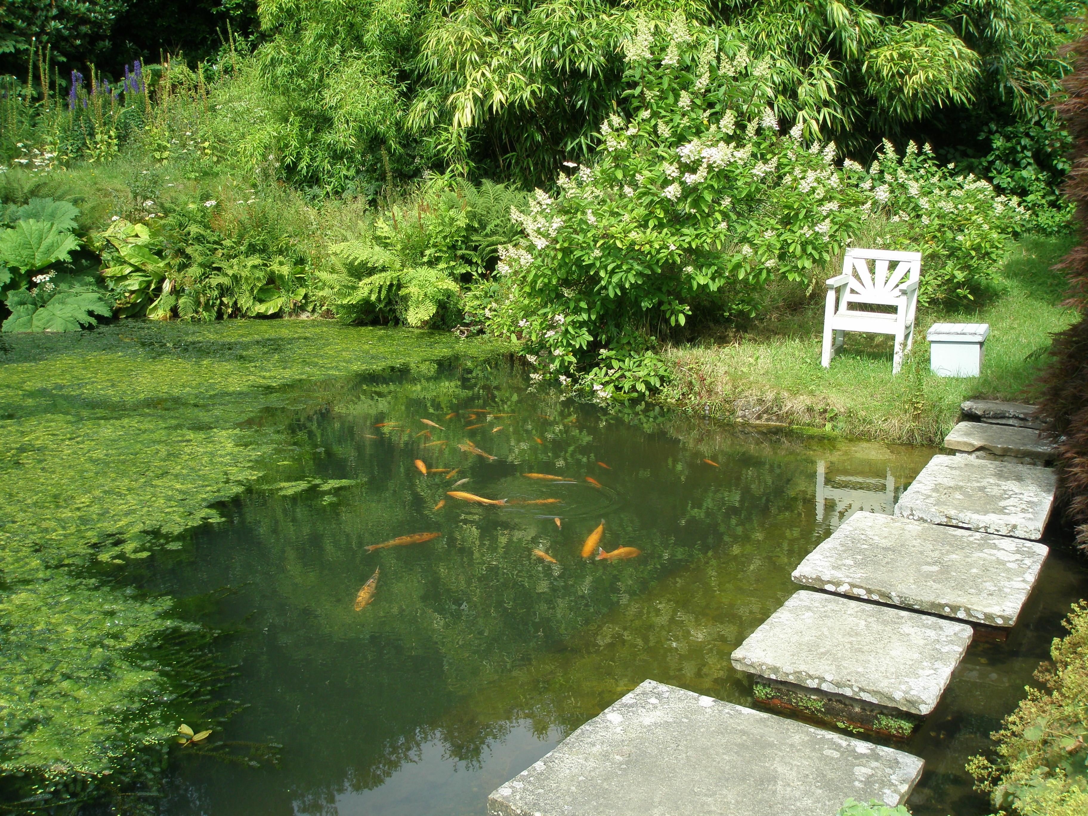 Part two rambling through the gardens estates of kent for Garden pond kent