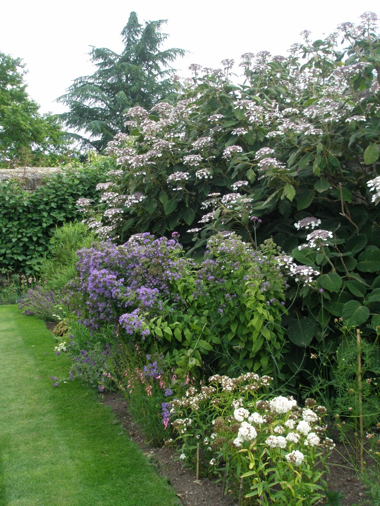 Mixed Borders of plants with pastel blossoms hug the inner perimeters of Lady Churchill's Rose Garden.