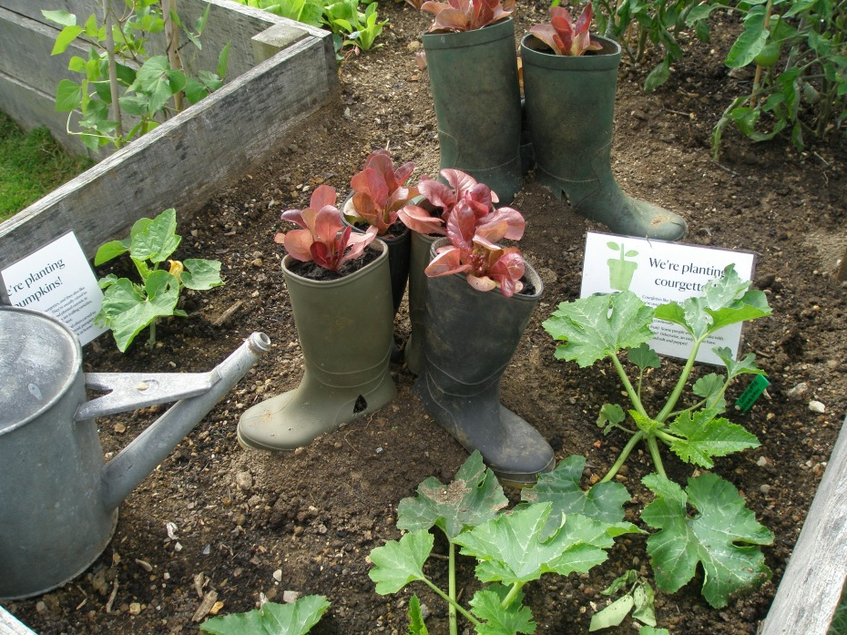 Boots--definitely not Winston's--are recycled as planters for lettuce.
