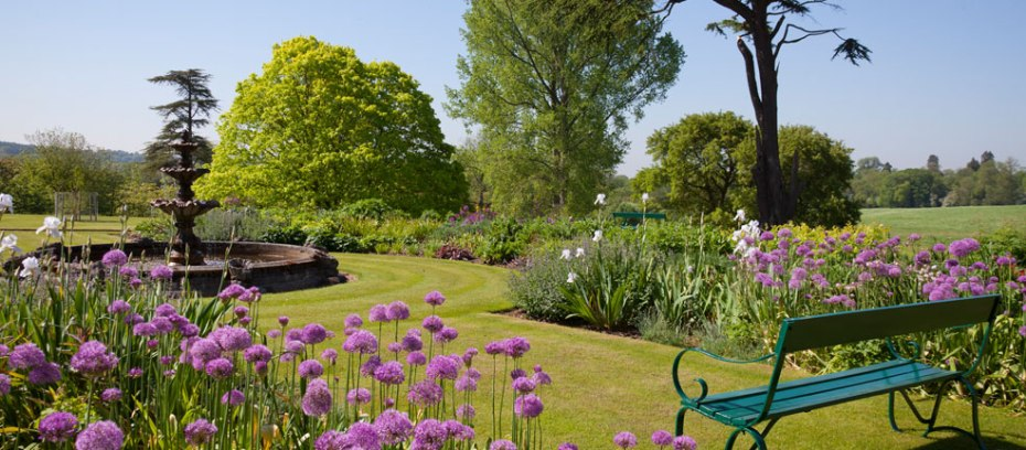 Alliums adorn the Lower Terrace, in early June. Image courtesy of Titsey Place & Gardens