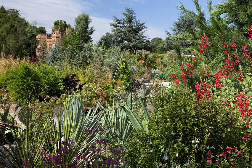A broad view over The World Garden. The original, Tudor walls of the Manor House's east side are visible in the background. Image courtesy of The World Garden.