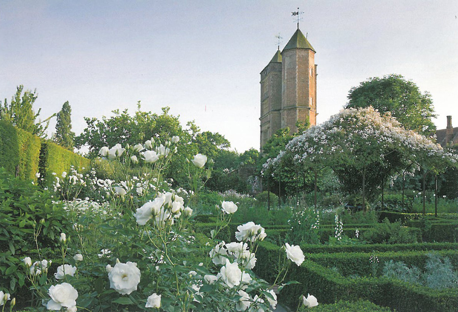 Ideally, the White Garden should look like this, with white climbing roses covering the Pergola. Image courtesy of The National Trust.