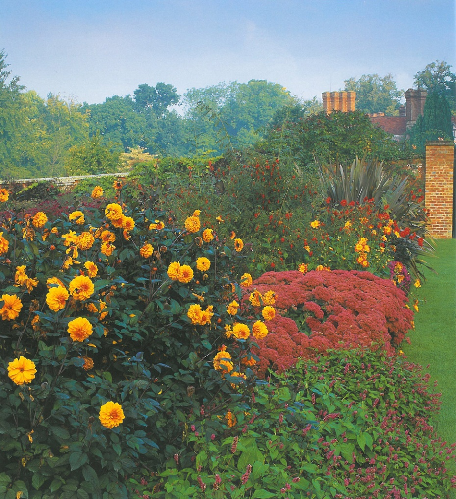 Another view of the Hot Gardens, in the Herbaceous Border section of the Garden. Image courtesy of Pashley Manor.