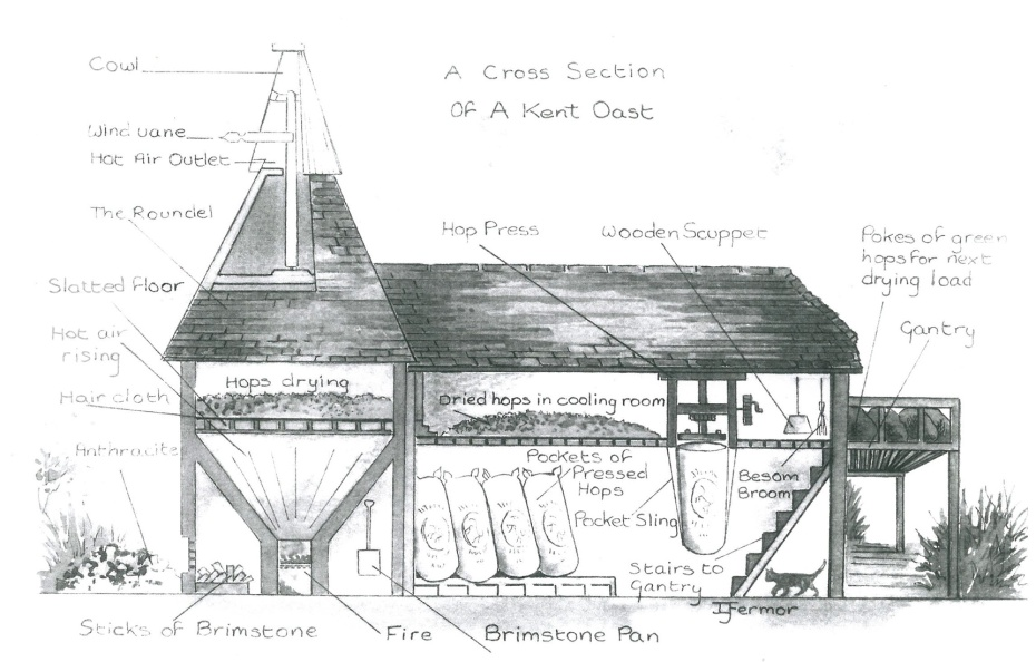 A Cross-Section of a Kent Oast. Image courtesy of Hopping Down in Kent.