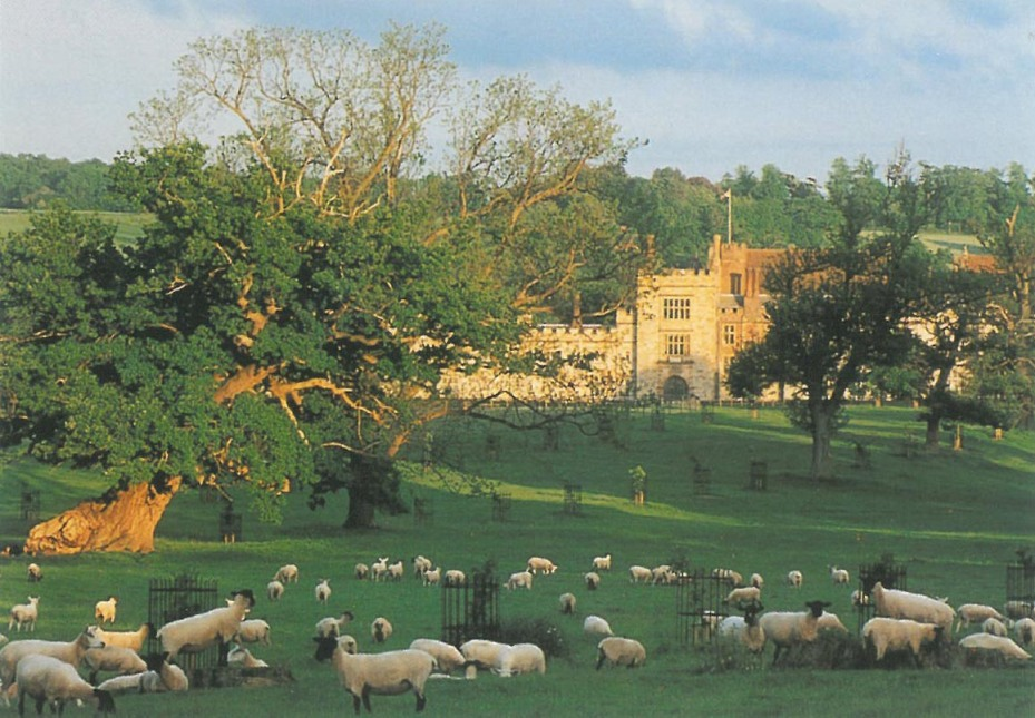 Sheep Heaven at Penshurst Place. It's impossible for me to NOT get excited, every time I see an English field full of these creatures. At the end of our 5 days of touring, Steve Parry gave me a book titled KNOW YOUR SHEEP. I confess I haven't yet memorized its contents, but someday, when I do indeed Know My Sheep, you'll have to endure a travel article about nothing BUT the many varieties of sheep in England! Image courtesy of Penshurst Place.