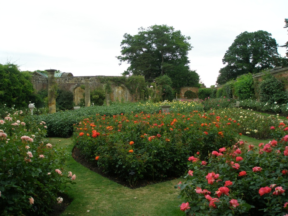 Astor's extensive Rose Gardens are on the southeastern side of the Italian Garden