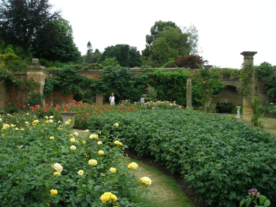 Another view of Astor's Rose Garden