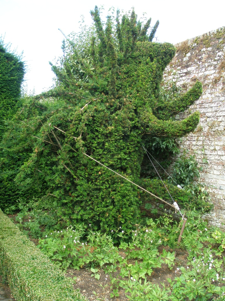 A heroic but over-ambitious attempt to create a Topiary Porcupine.