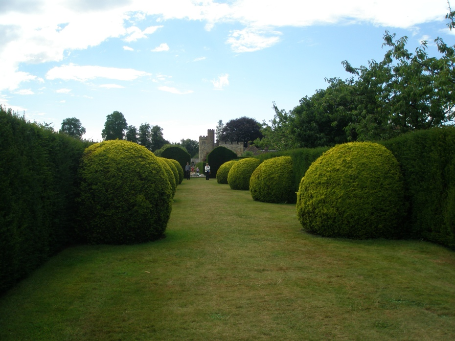An other-worldly and perfectly-pruned corridor of large globes of Irish Yew, and Hedges, with a glimpse of the House.