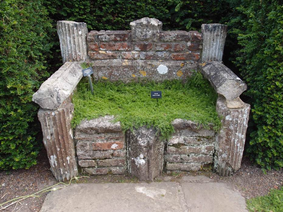 Garden Bench, planted with Chamomile