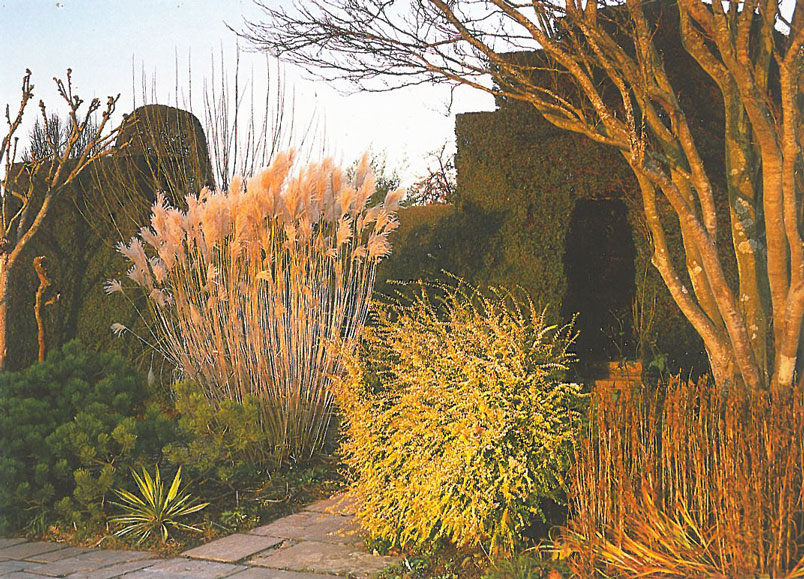 Even in winter, the Long Border is lovely. Image courtesy of Great Dixter Charitable Trust.