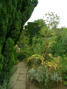 Paths in the Peacock Topiary Garden are intentionally narrow. One brushes up against everything that grows there.