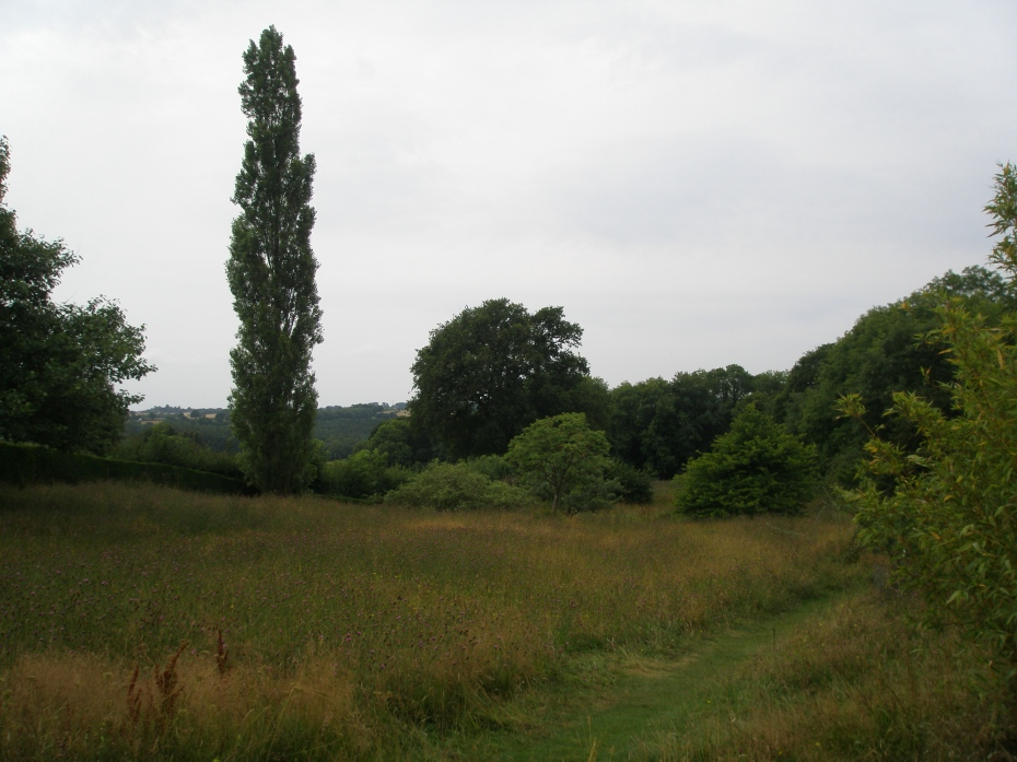 Just below the Long Border: a Meadow, which is south of the Orchard.