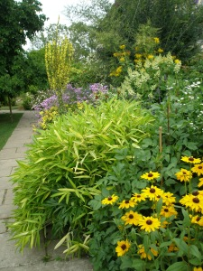A relatively tranquil section of the Long Border