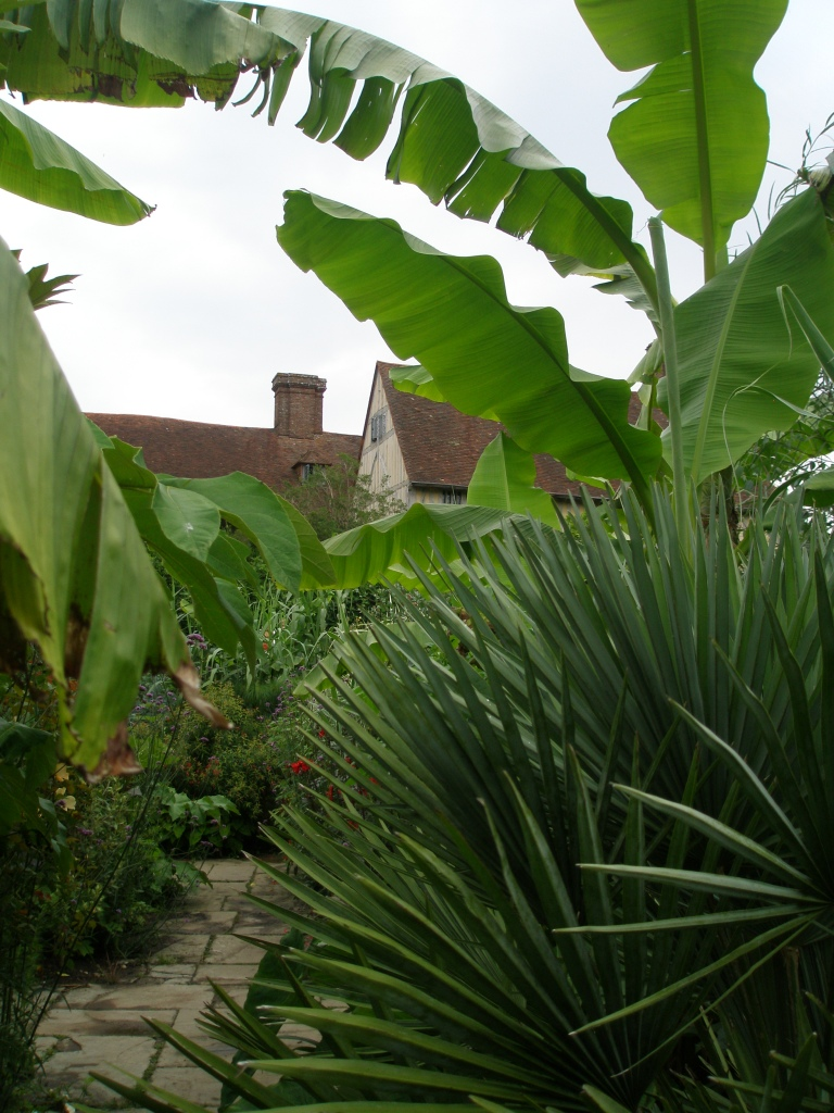 The loopy but charming juxtaposition of giant tropical plants, with the 16th century wing of the house.