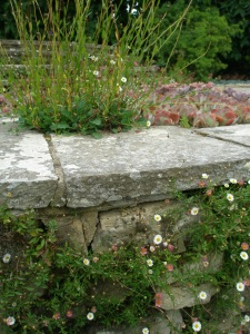 Detail of dry stone wall, at the Circular Steps.