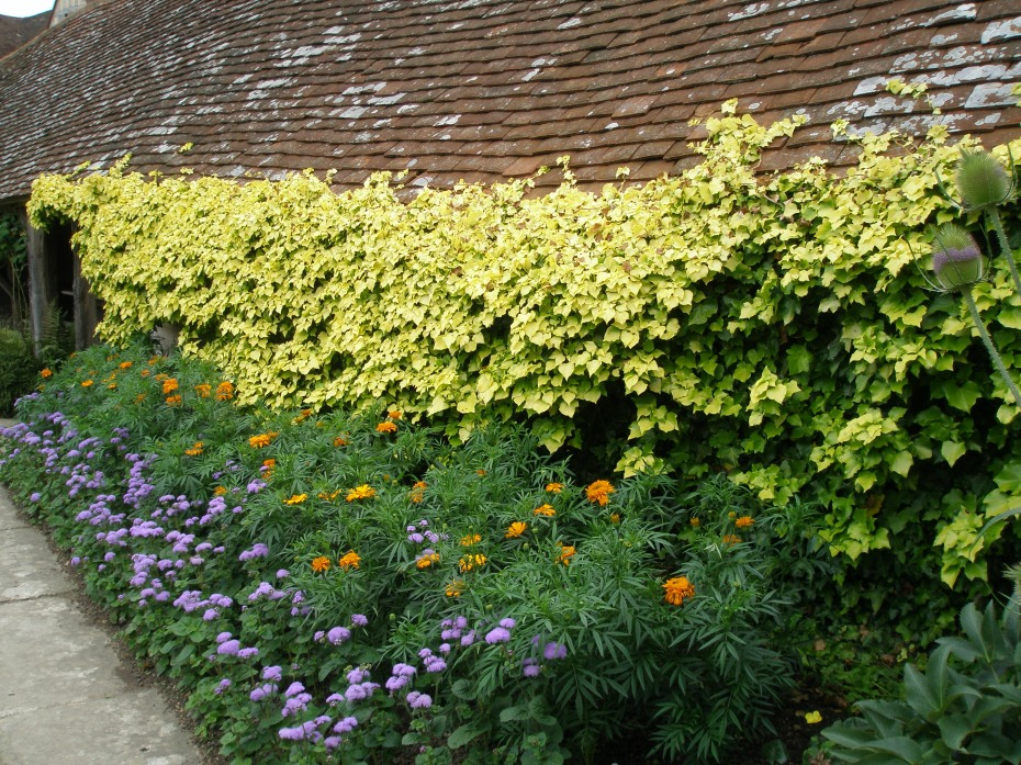 Along the edge of the Exotic Garden, masses of annual flowers seem to extend up onto the roof of the Hovel.
