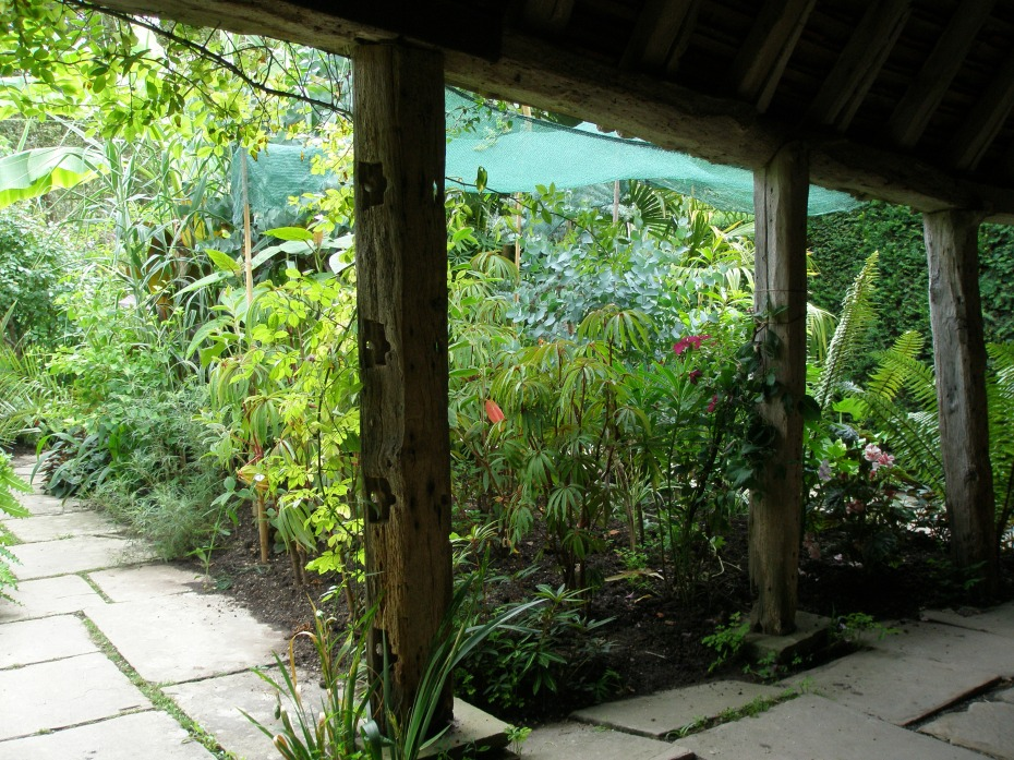"A view of the Exotic Garden, from the old cow shed that Lloyd called ""The Hovel."""