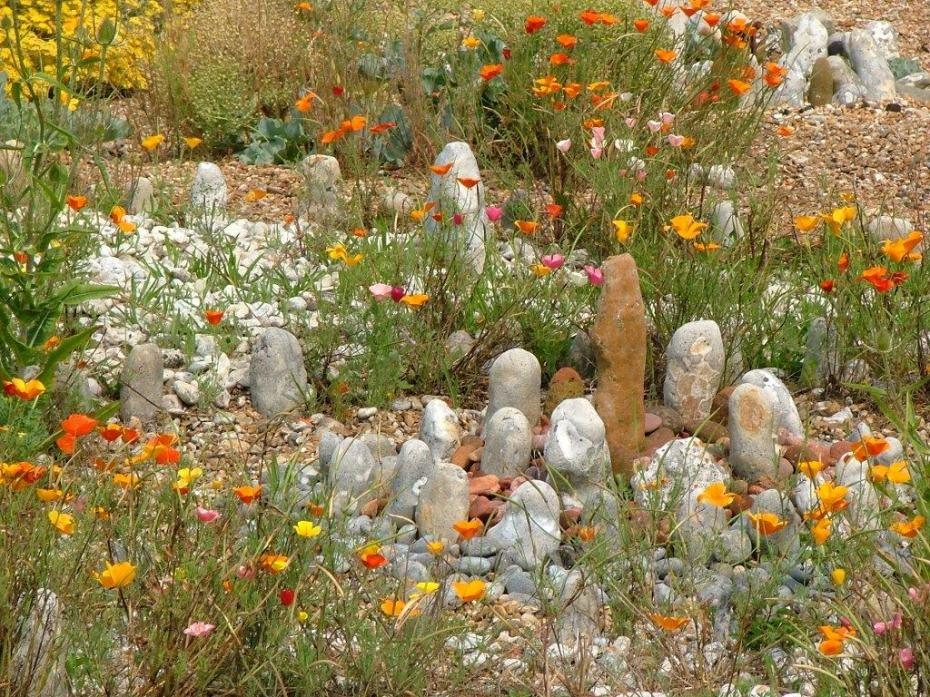 Derek Jarman's garden. Photo by Anne Guy.
