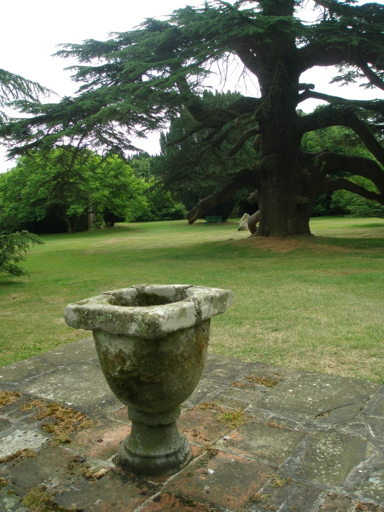 An Urn decorates the lawn, near the base of the Cedar of Lebanon tree.