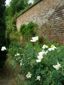 The brick walls of the Walled Garden date from the 1830s.