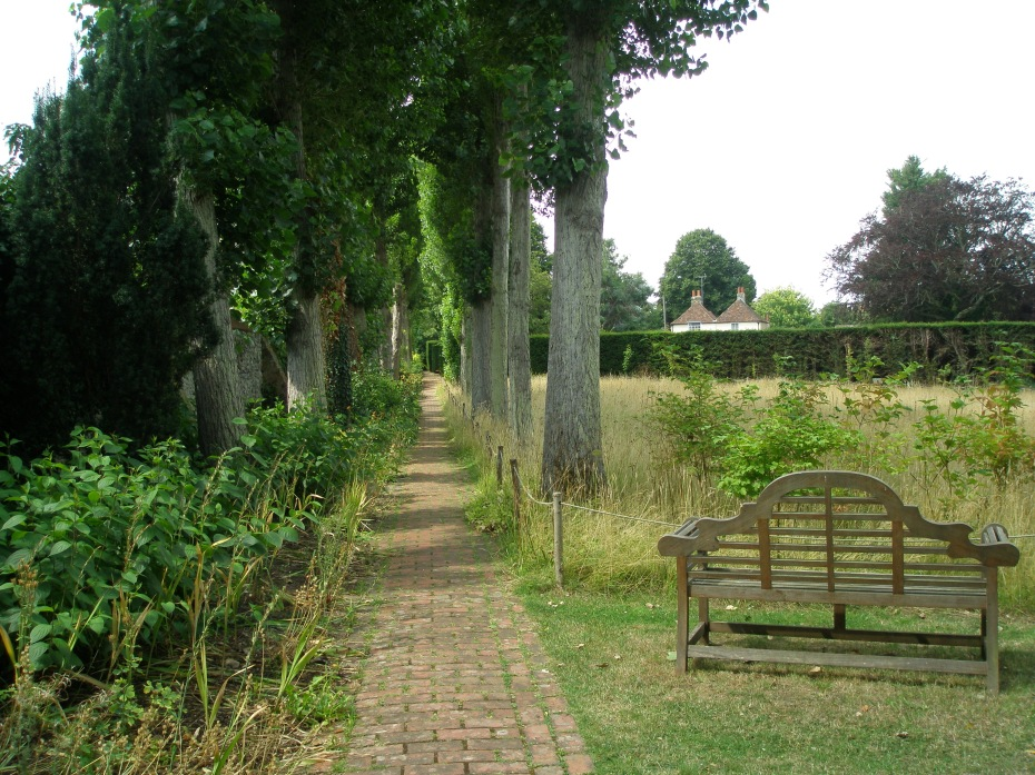 A WIDE view of the Poplar Walk, with one of Lutyen's omni-present teak benches.