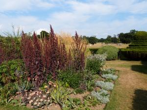 Informal plantings, on the Herbaceous Border.