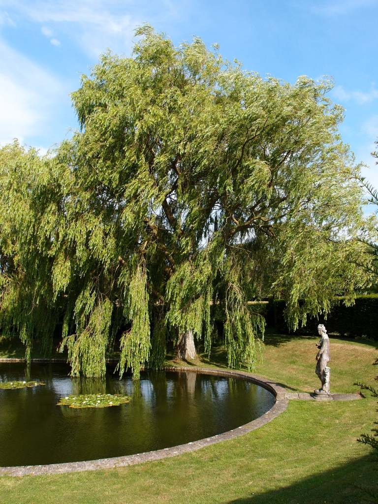 A classical statue stands at the southern-most curve of the Lily Pond