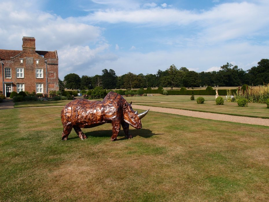 A rhino prepares to charge, on the Tennis Lawn