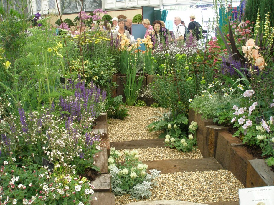 Impeccably-grown plants, nicely displayed at the Daisy Roots stand. This grower specializes in choice and unusual perennials and grasses. Their address: Jenningsbury, London Road, Hertford. SG14 3LG, England. Phone# 07958-563355